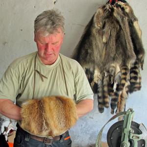Wenn Kunden es wünschen, stellt Steffen Kottke auch gleich einen Kontakt zu einer Kürschnerin in Loitz bei Demmin her, die aus den Fellen Muffs, Mützen oder Decken anfertigt. Foto: Grit Gehlen