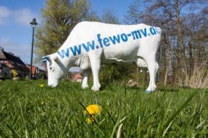 Online-Marketing: Mit Strategie zum Erfolg @ EGZ Waren | Waren (Müritz) | Mecklenburg-Vorpommern | Deutschland