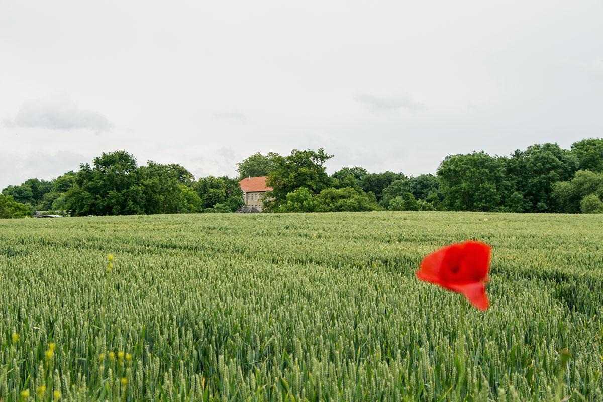 ländlicher Raum