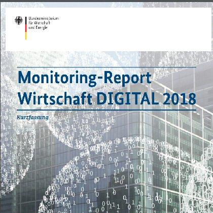 Wirtschaft DIGITAL, Monitoring Report